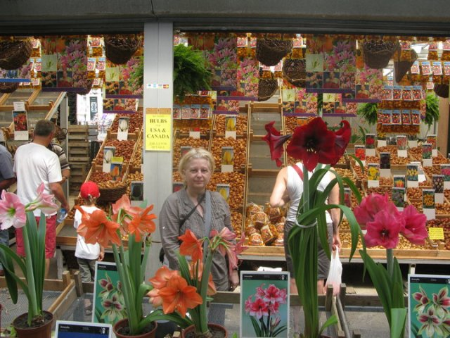 SLL flower market at Amsterdam